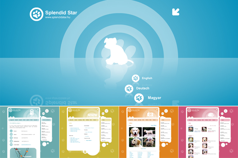 Splendid Star Web Design